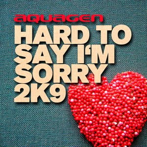 Hard To Say I'm Sorry 2K9